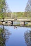 Calm lake reflection Stock Photography