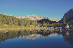 Calm Lake Surface Mirroring Forest Trees and Mountain Ranges at Daytime Stock Photography