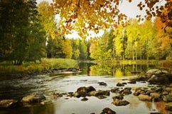 Calm lake. Texture conceptual images Stock Photo