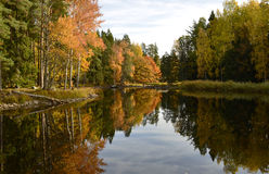 Calm lake. Texture conceptual images Stock Image
