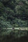 Calm lake Stock Photos