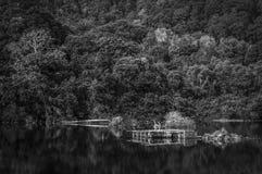 Calm lake Stock Photo