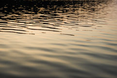 Calm lake water. With small waves during sunset Stock Photography