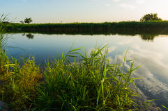 Calm lake water. Landscape during a summer day Royalty Free Stock Photo