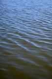 Calm lake water Royalty Free Stock Photography