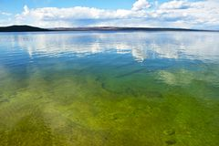 Calm Lake Yellowstone Stock Images