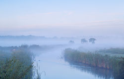 Calm misty morning over river Royalty Free Stock Image