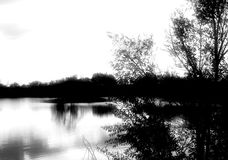 Calm Morning. A soft-focus black and white shot of a lake and trees early one morning. Space for copy Royalty Free Stock Photos