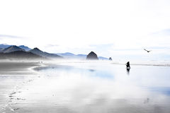 Calm morning at the ocean coast. Morning mist over the Pacific ocean in Cannon beach, Oregon, USA Royalty Free Stock Photography