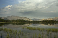 Calm mountain lake and grass near the shore. Yakutia, Omulewska the Midlands Stock Images