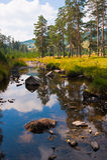 Calm mountain river landscape scene Stock Photography