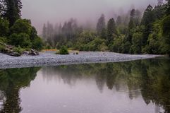 Calm Mountain River Winds Through Foggy Forest. On quiet morning Stock Photo
