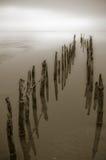 Calm ocean. Groynes leading to calm sea Royalty Free Stock Photography