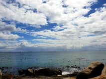 Calm ocean and birds photographed at Simonstad, South Africa