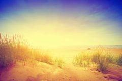 Calm ocean and sunny beach with dunes and green grass. Vintage Stock Photo