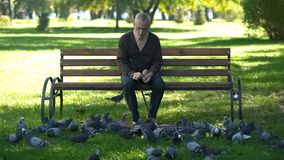 Free Calm Old Man Sitting On Bench In Park And Feeding Pigeons, Loneliness In Old Age Royalty Free Stock Photos - 145150198