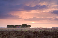 Calm pink sunset over home among swamps Stock Photos