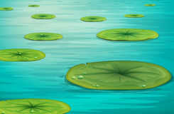 Calm pond scene stock illustration
