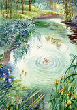 Calm pond scene. Wood, watercolor Stock Images