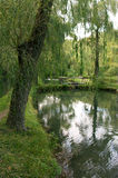 Calm pond Royalty Free Stock Photography