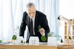 Calm real estate agent adding trees to his adorable miniature houses royalty free stock photography