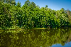 Calm river on a clear day Royalty Free Stock Photography