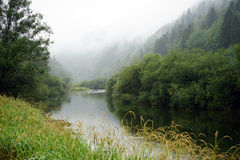 Calm river Royalty Free Stock Photo