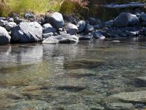 Calm river flow royalty free stock photography