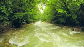 Calm River Flowing Down Among Lush Greenery In stock footage
