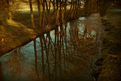 Calm river stream Royalty Free Stock Photo