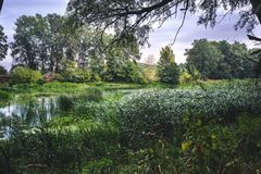 Calm river in the summer morning with green trees on background stock image