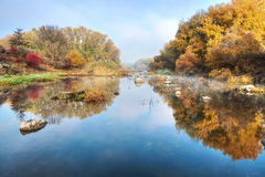 Calm river and trees Royalty Free Stock Images