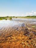Calm River Stock Photo