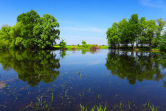 Calm river water and green trees as abstract gate. Summer landscape in sunny day Royalty Free Stock Photos