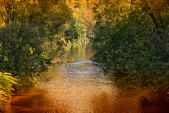 Calm river Wupper on a sunny day Stock Photo