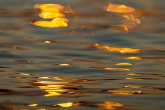 Calm Sea wave sunset view blue water ocean. Sunrise reflected in sea water, reflection in golden color stock photo