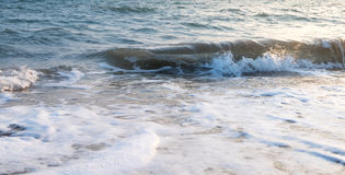 Calm sea wave. With white foam on the beach royalty free stock photography