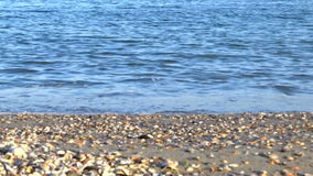 Calm sea waves beach stock video footage