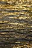 Calm sea waves on the sunset. Close up view of calm sea waves on the sunset Stock Photos