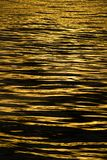 Calm sea waves on the sunset. Close up view of calm sea waves on the sunset Royalty Free Stock Image