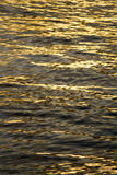 Calm sea waves on the sunset Royalty Free Stock Photography
