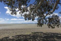 Calm seas of the Abel Tasman National Park, South Island, New Ze Stock Photos