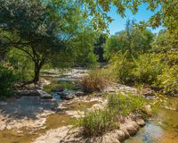 Calm section of river with rocks in water and on banks, in forest woods royalty free stock photography
