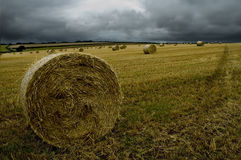 Calm before the storm. Landscape view of hay bails in a field with a storm approaching Stock Image