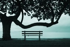 Calm before the storm. Image of a park bench looking out to sea Stock Photo