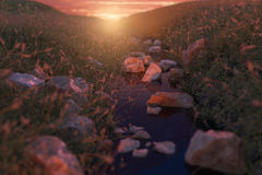 Calm stream at grassland in front of beautiful sunset Stock Photography