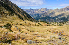 Calm stream in the Valley of Estanyo River, Andorra Royalty Free Stock Photo