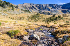Calm stream in the Valley of Estanyo River, Andorra Royalty Free Stock Photography