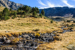 Calm stream in the Valley of Estanyo River, Andorra Royalty Free Stock Photos