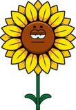 Calm Sunflower Stock Photography